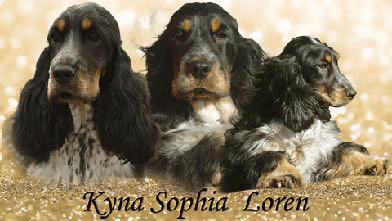 Kyna Sophia Loren
