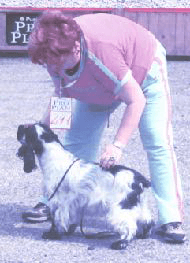 Kyna Penelope Pitstop